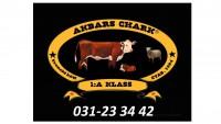 Akbars Chark
